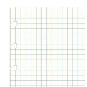 Бланки в клітинку для блокноту Filofax, A5, білі