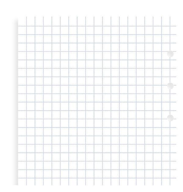 Бланки в клітинку до органайзеру Filofax, Personal, (Clipbook), білі